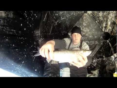 Gopro cisco pike youtube for Cisco s sportfishing fish count
