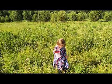 В глуши Кировской области