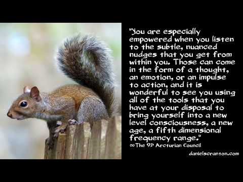 Your Intellect & Your Intuition ∞The 9D Arcturian Council, Channeled by Daniel Scranton