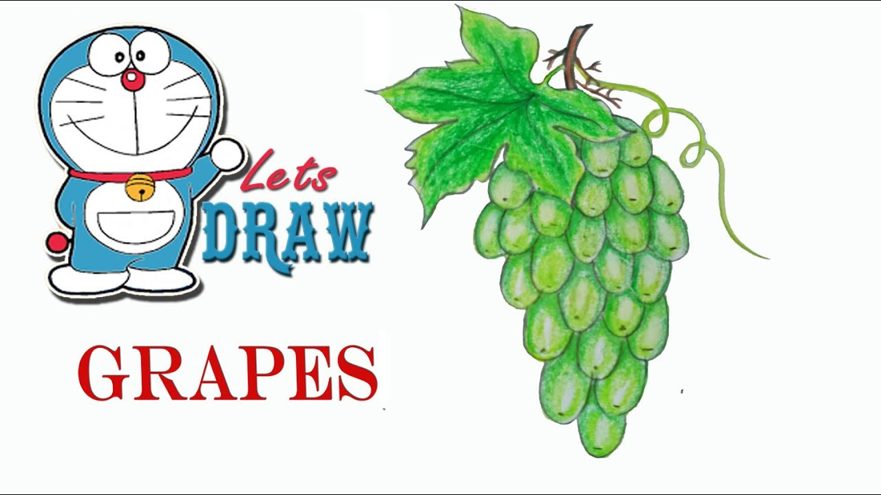 How to draw grapes step by step (very easy) - YouTube for drawing grapes easy  186ref
