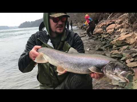Catching PREHISTORIC Trout While Steelhead Fishing The Niagara