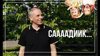 как правильно выбрать детский сад / Константин Акимов
