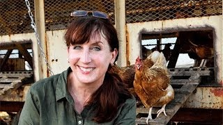 Maryn McKenna on Agriculture, Antibiotics and Big Chicken