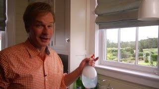 Homemade Window Cleaner | At Home With P. Allen Smith
