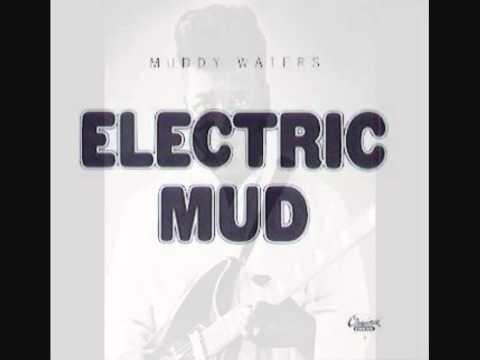 Muddy Waters Herbert Harper