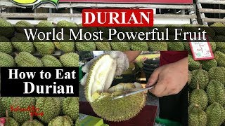Durian Fruit | How to Eat Durian Fruit | World Most Powerful Fruit