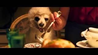 Pongo il cane milionario - ITA