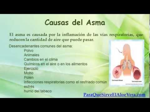 2 Remedios Caseros Para el Asma con Aloe Vera - YouTube
