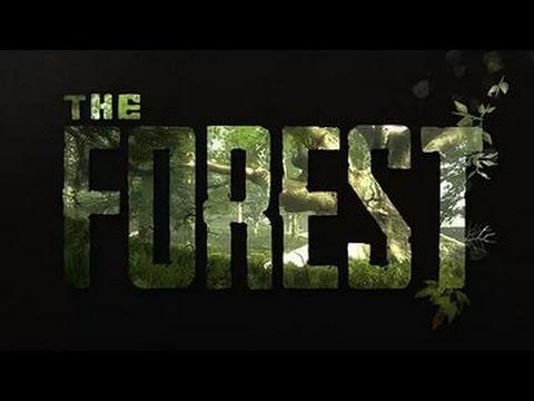 Руководство Запуска The Forest По Сети - фото 4