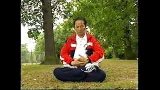 Chinese Chi Kung (Qi Gong) Master Demonstrating.