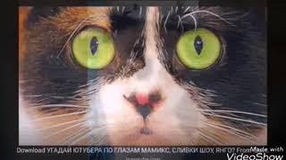 Мини клип  Маня +Куки+Валера=😎😎😎