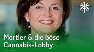 Mortler & die böse Cannabis-Lobby   DHV-News #199