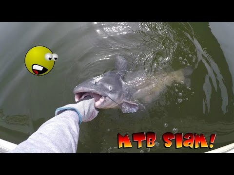 BIGGEST CATFISH I'VE EVER SEEN from YouTube · Duration:  10 minutes 52 seconds  · 61 views · uploaded on 4/17/2017 · uploaded by Blake's Fun World