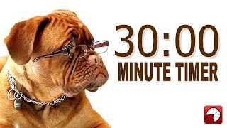 30 Minute Timer for PowerPoint and School - Alarm Sounds with Dog Bark