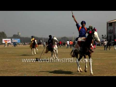 Sikhs do tent pegging - an ancient cavalry sport