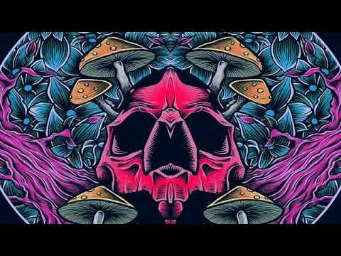 y2mate com   acid division pas de justice pas de paix eCSkLvTbM3U 360p online video cutter com