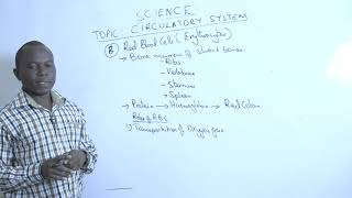 18  Mr  Wambete Isaiah   Body systems   Circulatory System  SCIENCE YEAR 9