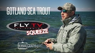 FLY TV Squeeze - Gotland Sea Trout
