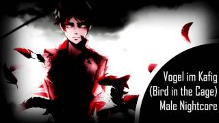 [HD] Vogel im Käfig (Bird in the Cage) - Male Nightcore /w Lyrics