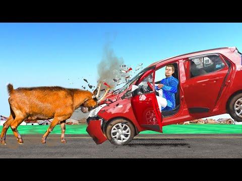 बकरी कार सड़क दुर्घटना कॉमेडी वीडियो Goat Vs Car Mishap Hindi Kahaniya हिंदी कहानियां Comedy Video