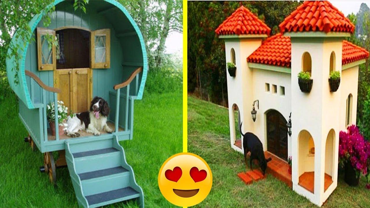 most creative beautiful dog houses