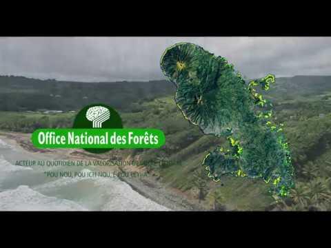 Action de reconquête de la Forêt Domaniale Littorale en Martinique (1988-2018)