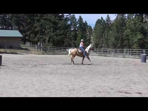 Cowgirls Pal O Mine 4