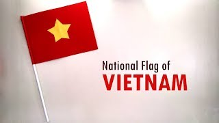 How to Make the National Flag of Vietnam | DIY School Project | Vietnam Flag Making