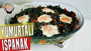 ispankl-yumurta-tarifi-hatice-maz-ile-yemek-tarifleri
