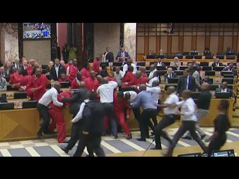 Brawl breaks out in South African General Assembly