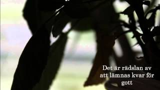 Patrik Isaksson & Bandet - Under mitt tunna skinn (Melodifestivalen 2008) - Lyrics