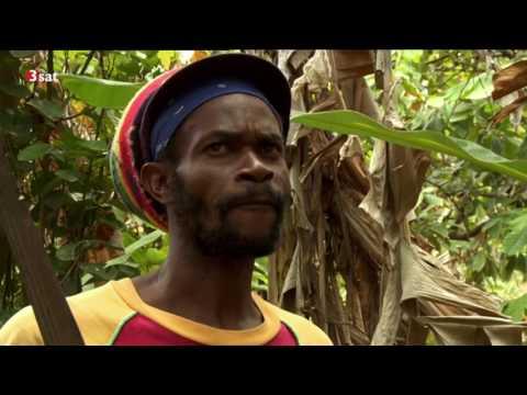 Fernweh: Karibik 2/7 DOKU 2017 HD