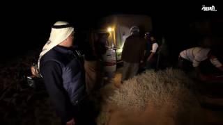 معاناة فريق على خطى العرب في الصحراء!