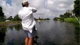 "How To Catch Snakehead ""Class 101"