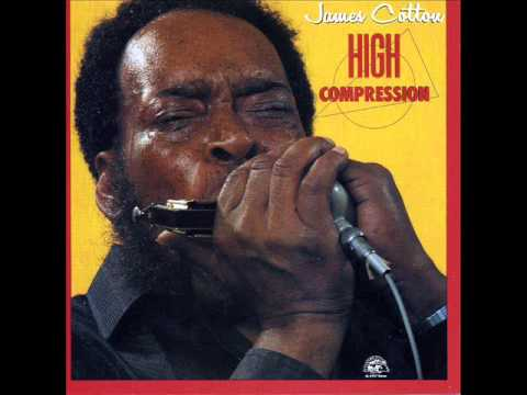 James Cotton Band Superharp