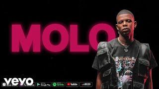 Aubrey Qwana - Molo (Official Lyric Video)