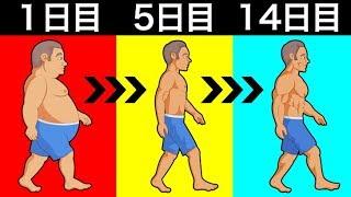 体重を落とすために必要な消費カロリーはどのくらい?