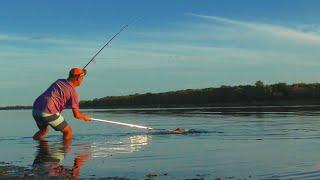 ОГРОМНЫЙ САЗАН С РЕКИ БУЗАН Конец рыбалки был неожиданным Ловля сазана в Астрахани