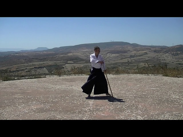 02 Kaeshi Tsuki - Aikido Novum Experience - Jo Suburi Nijuppon - Tsuki Gohon - 返し突き - 合気道 - 杖素振り20本