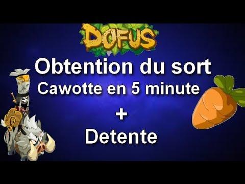 Dofus Obtenir Le Sort Cawotte En 5 Minute Vidéo Detente