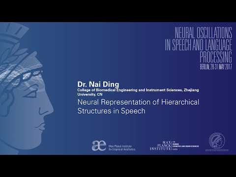 Neural Oscillations in Speech and Language Berlin 2017 - Nai Ding