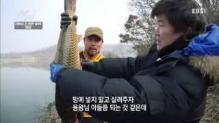 성난 물고기 - 자존심을 건 한판 승부! 잉어_#002