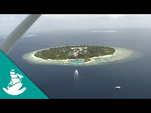 Maldives, A Diving Paradise - Now in High Quality! (Full Documentary)