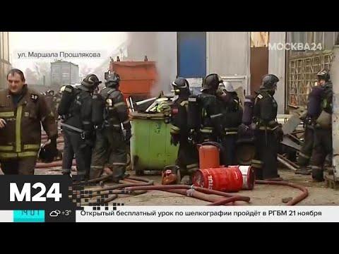 Концентрация вредных веществ в воздухе в результате пожара в Строгине не превышена - Москва 24