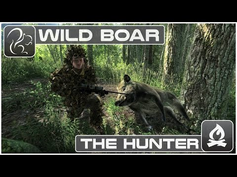 The Hunter - Wild Boar
