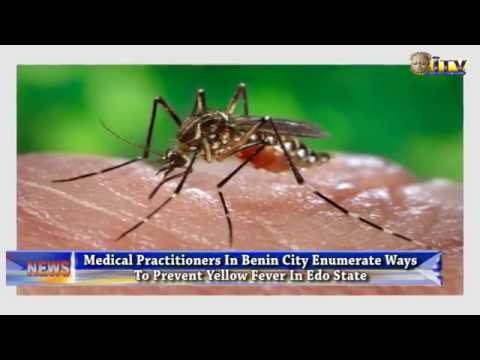 Medical Practitioners In Benin City Enumerate Ways To Prevent Yellow Fever In Edo State