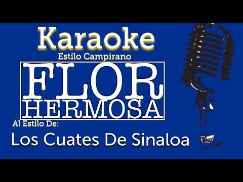 Flor Hermosa - Karaoke - Los Cuates De Sinaloa