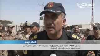 القوات العراقية تطبق الخناق على داعش في الفلوجة