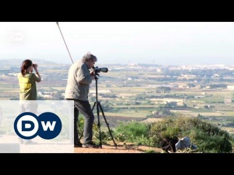 Malta: Hunt On Migratory Birds | Focus On Europe