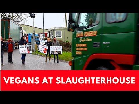 Vigil at Bristol Pig Slaughterhouse